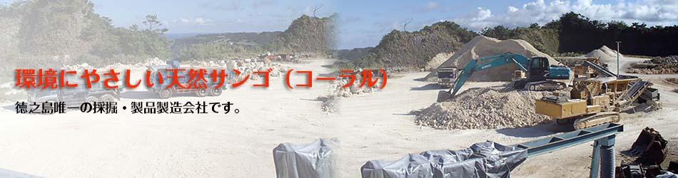 徳之島コーラル